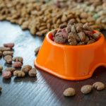 FPSA Pet Food Council Elects Board of Directors